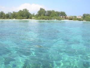 Air-jernih-laut-di-gili-trawangan-15