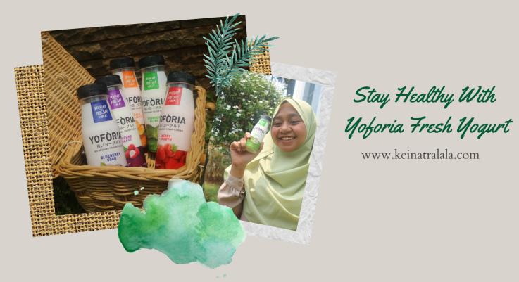 Sehat Bersama Yoforia Fresh Yogurt